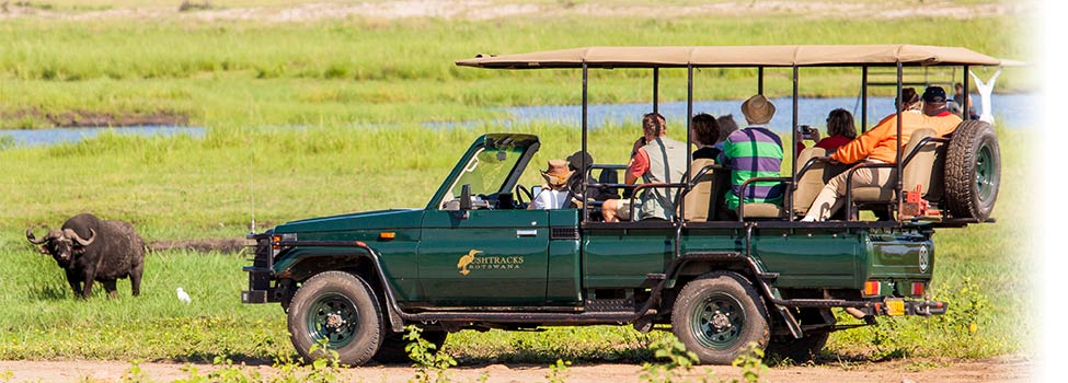Explore-Botswana-Activities-organized-safaris