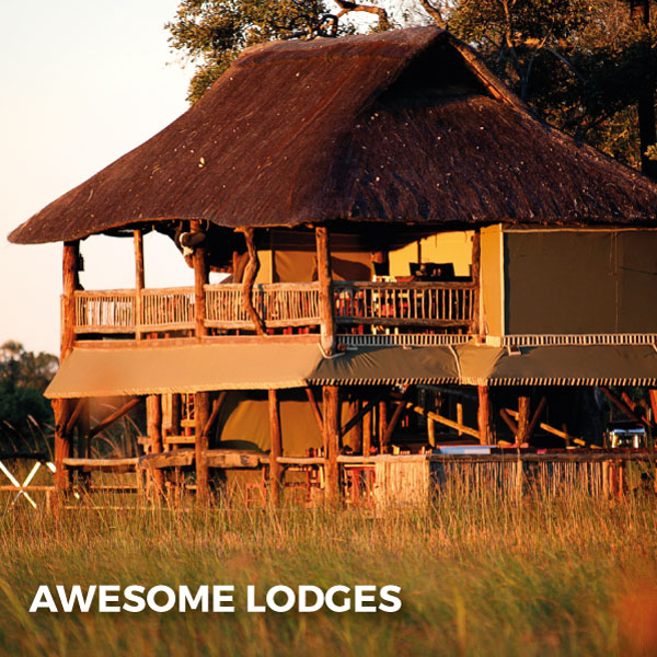 Explore-Botswana-Gallery-Awesome_Lodges