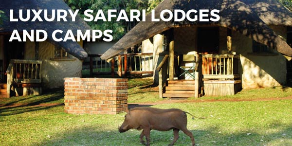 Explore-Botswana-Gallery-Luxury_Safari_Lodges_Camps