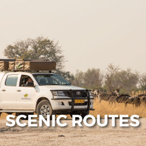 Explore-Botswana-Gallery-Scenic_routes