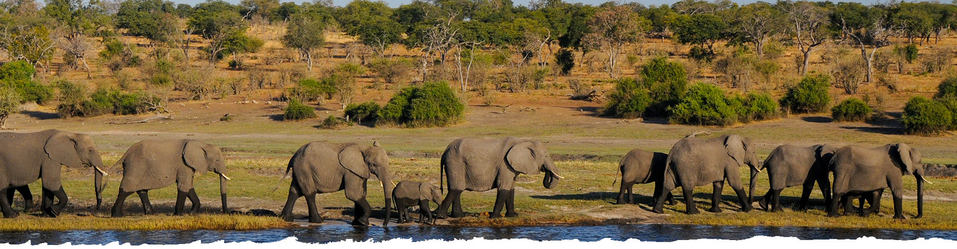 Explore-Botswana-Home-slider-01