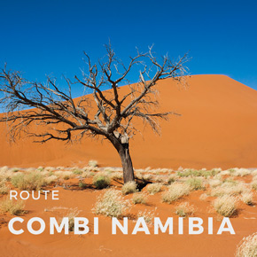 Combi Namibia - 21 days
