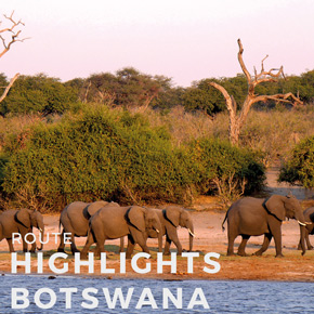Highlights Botswana - 14 days
